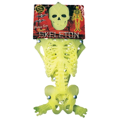 Glowz - Human Skeleton Medium Size - MRP Rs. 199/-