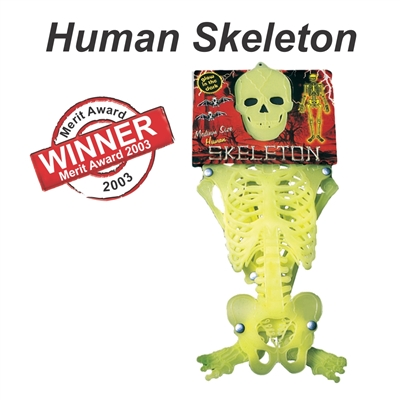 Merit Award  - 2003 - Human Skeleton